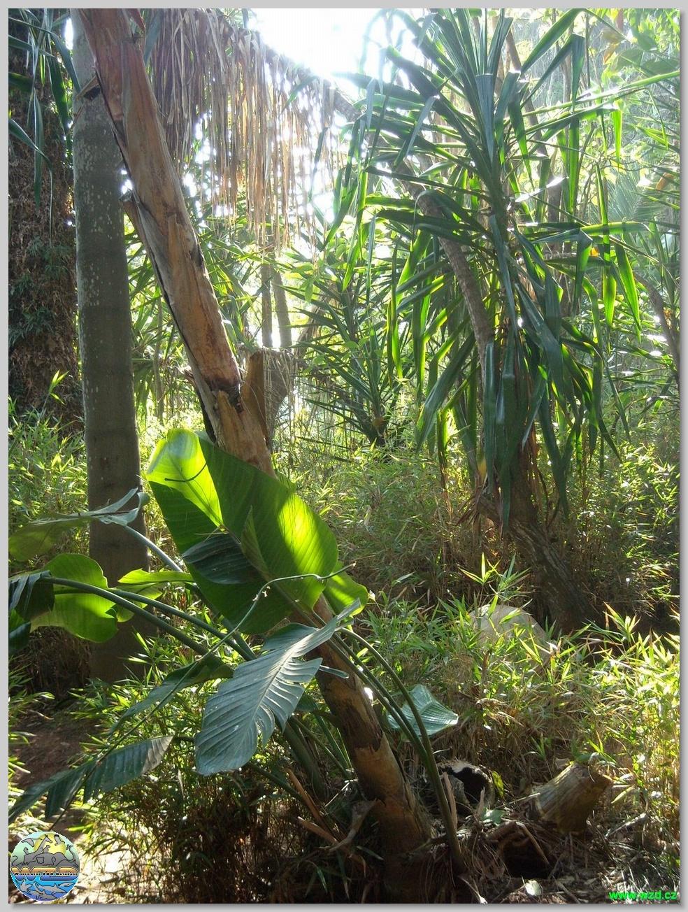 Les jardins exotiques de sidi bouknadel - Photo de jardin exotique ...